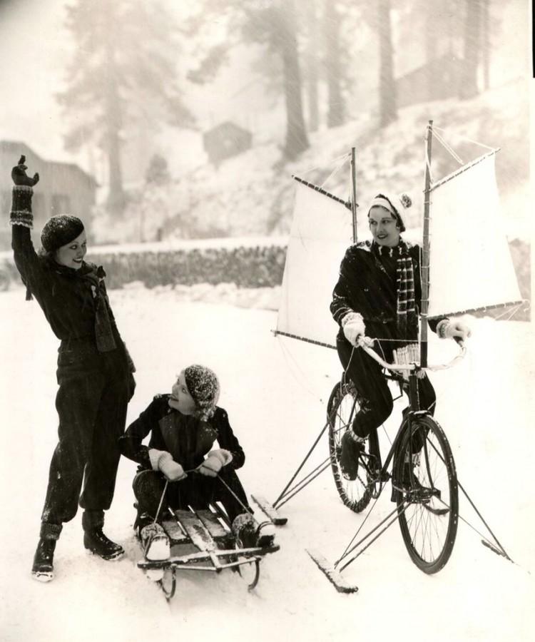 bike sleigh