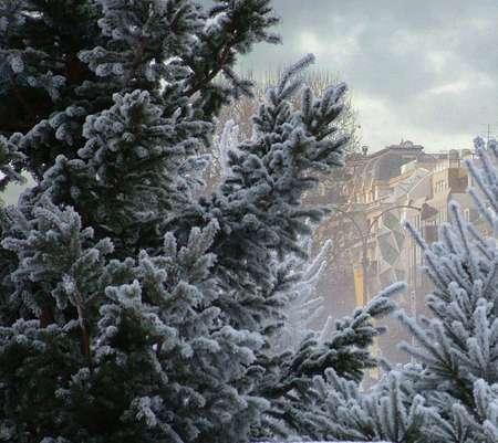 Зевака Праздный - Имитация зимы