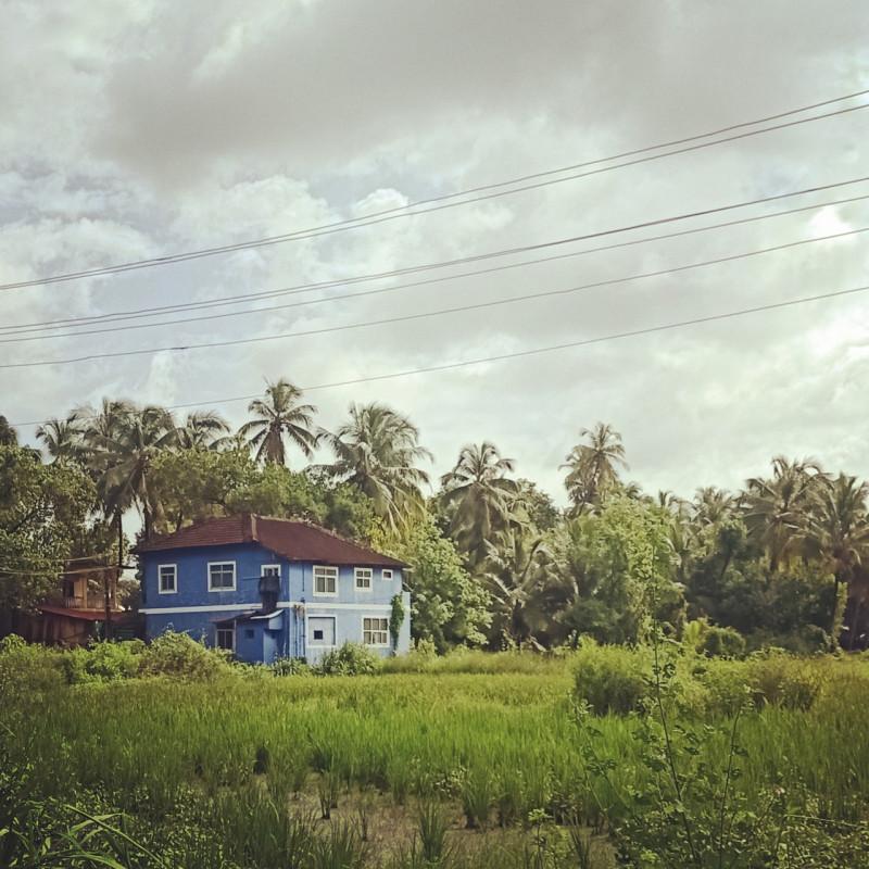 Просто дом с видом на рисовое поле