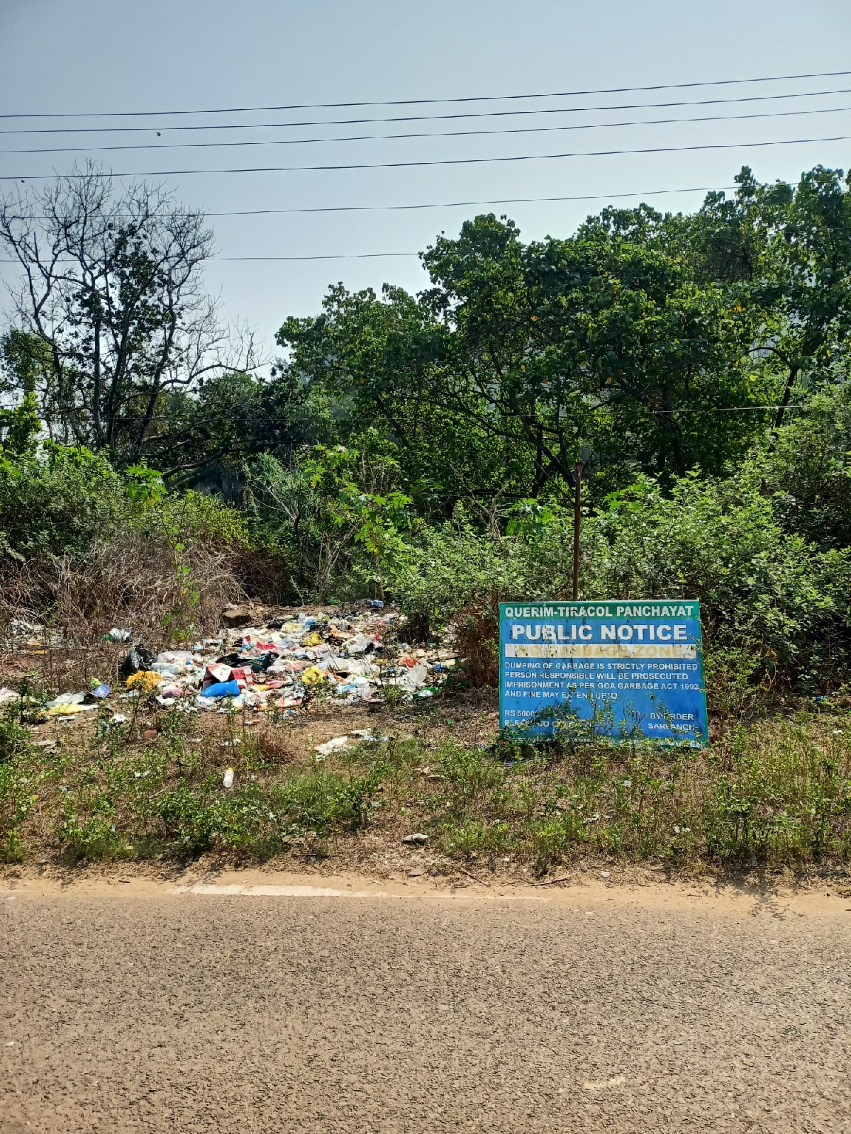 Надпись на плакате угрожает штрафом злостным загрязнителям окружающей среды и кидателям мусора на обочины дорог