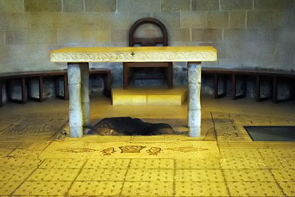 106а--Камень-преумножения-хлебов-и-рыбы-(Табгха)