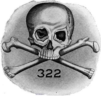 1230254735 (1) череп
