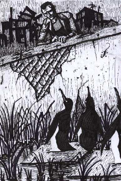 pingvi