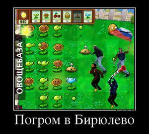 31620163_pogrom-v-biryulevo.thumbnail