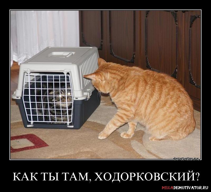 kak-ty-tam-xodorkovskij_1