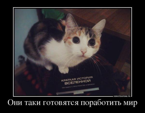 56596010_oni-taki-gotovyatsya-porabotit-mir