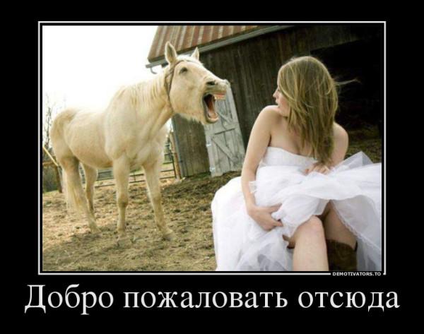 86322866_dobro-pozhalovat-otsyuda