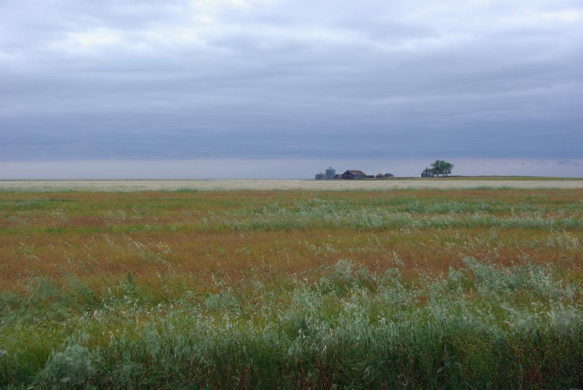 Saskatchewan_Glamis (201)