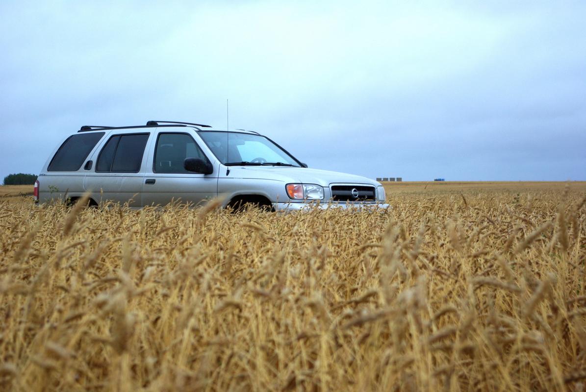 Saskatchewan_Glamis (88)