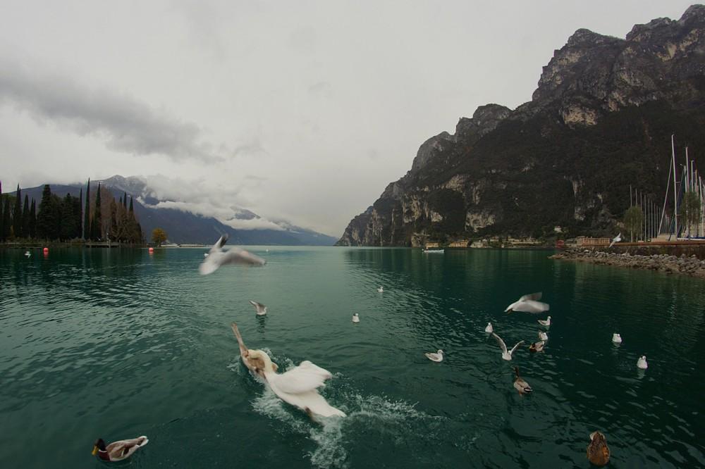 Альпы, Италия, Озеро Гарда, Рива дель Гарда, Garda, Riva del Garda (2)