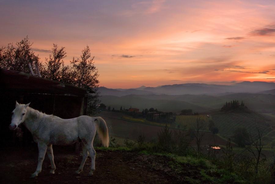Тоскана, Tuscany (6)