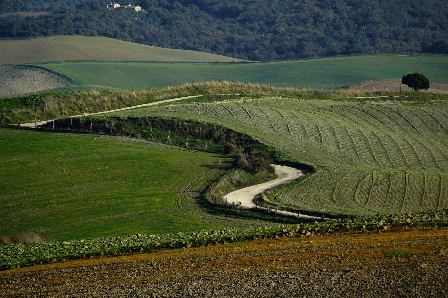 Тоскана, Tuscany (14)