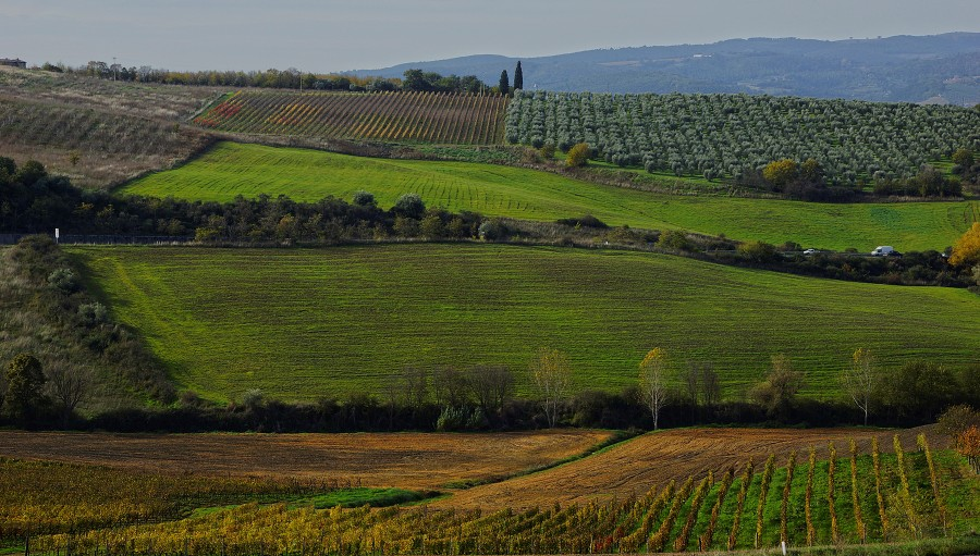 Тоскана, Tuscany (19)
