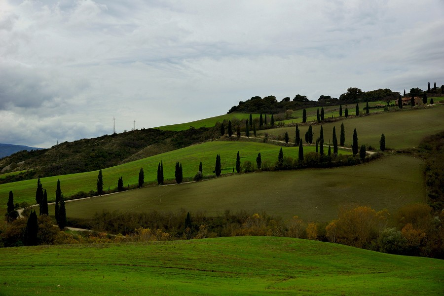 Тоскана, Tuscany (28)