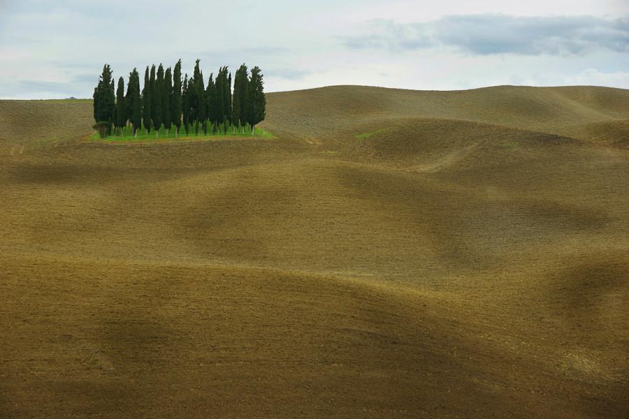 Тоскана, Tuscany, Торрениери, Torrenieri (2)