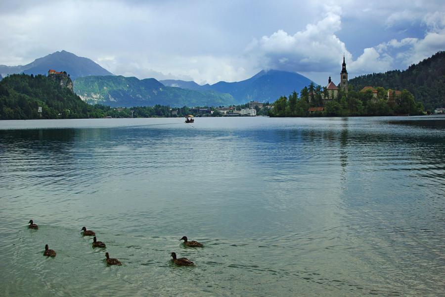 Озеро Блед, Словения (15).JPG