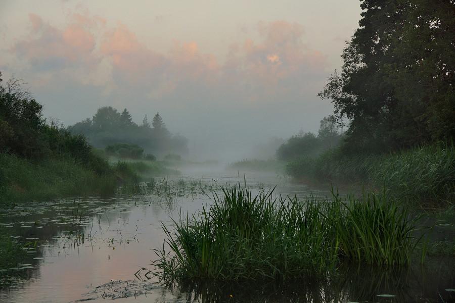 Деревня Церковище, Река Усвяча (5)