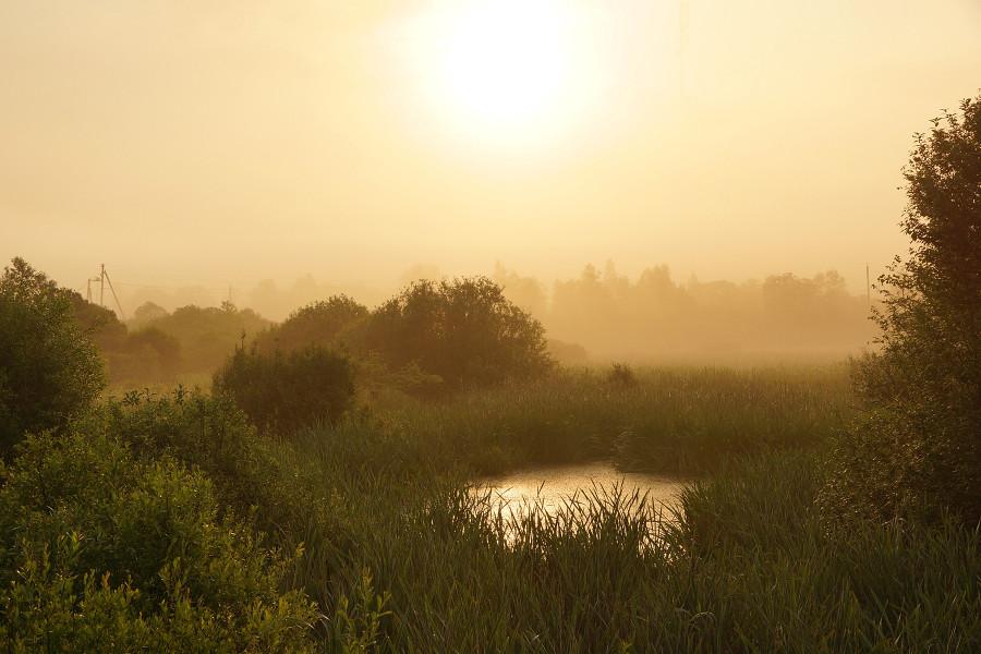 Деревня Церковище, Река Усвяча (12)