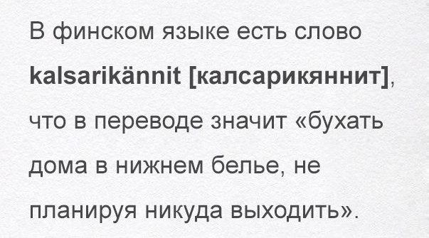 В Запорожье задержали угонщиков, которые по ошибке похитили полицейский автомобиль - Цензор.НЕТ 6355