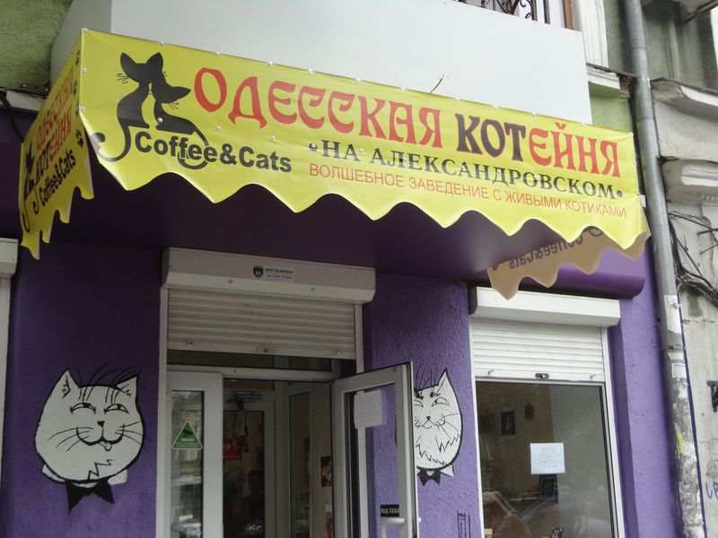 Odessa2016-7