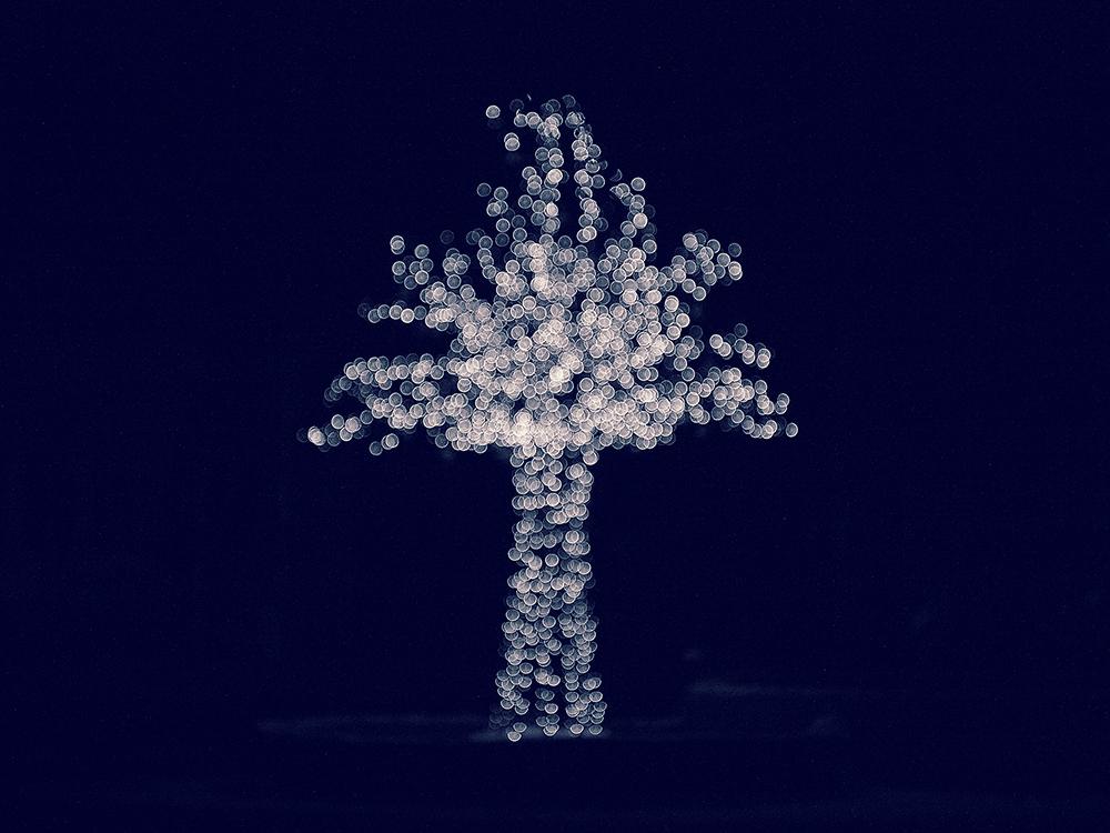 bubble_tree_4.jpg