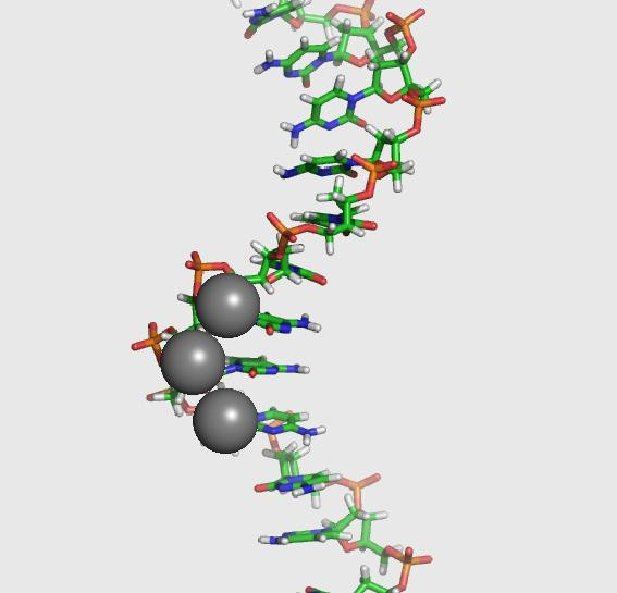 DNA-Ag