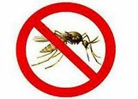 Комар, средства от комаров и укусов