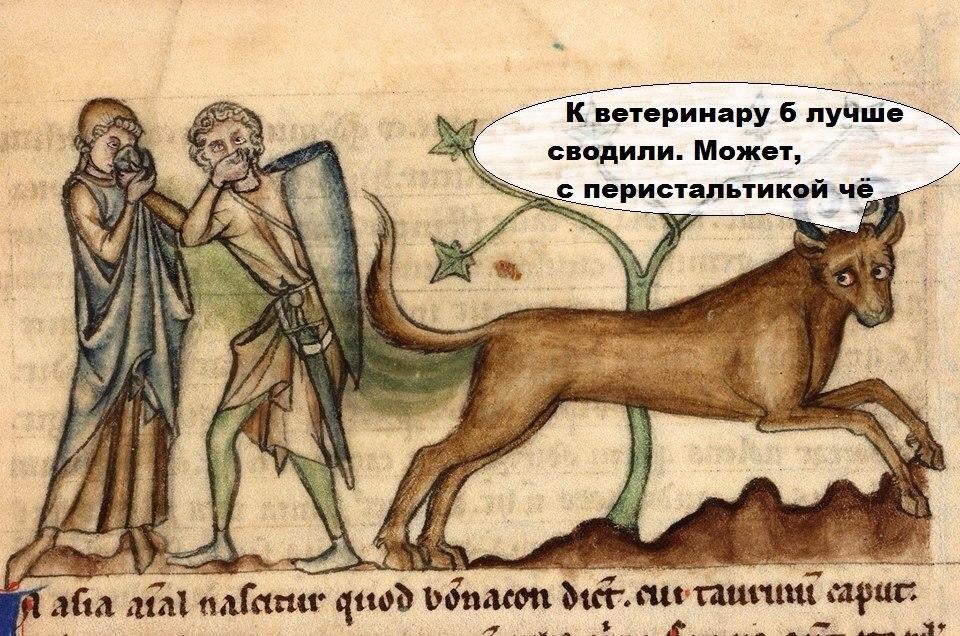 Страдающее средневековье смешные картинки