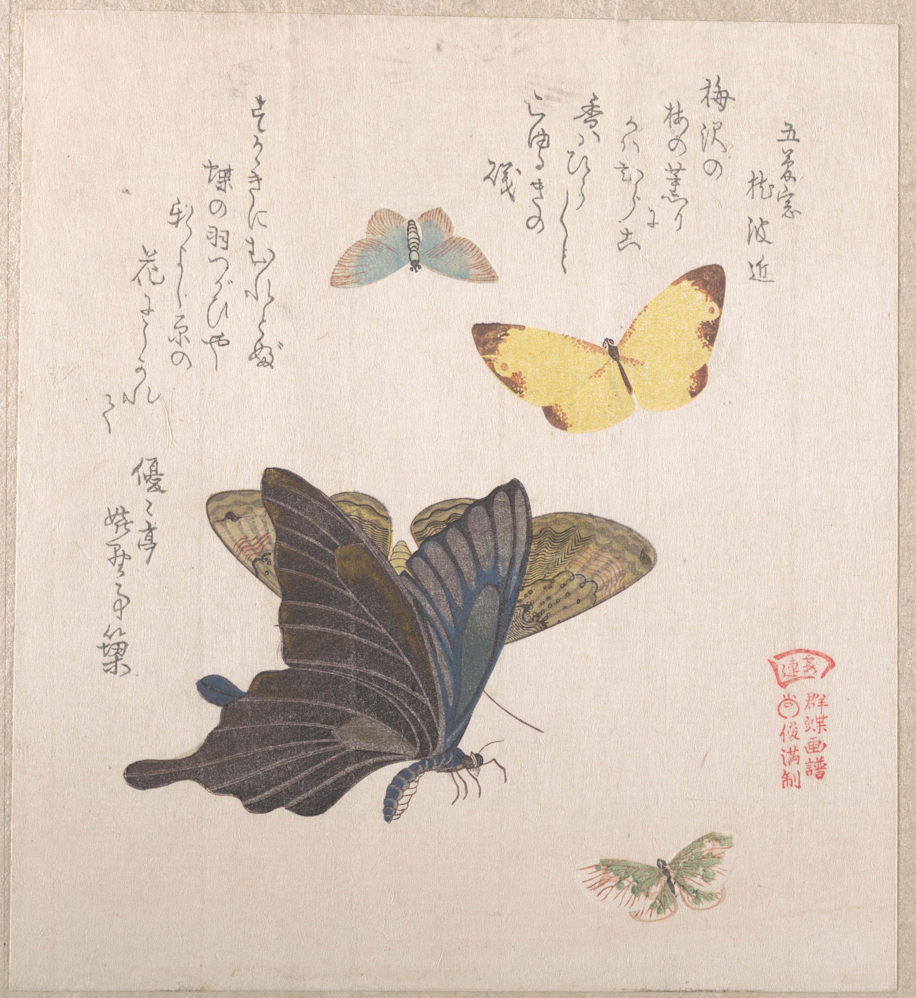 Бабочки и различные мотыльки_198х198 мм