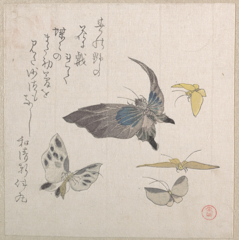 Бабочки_140х133 мм