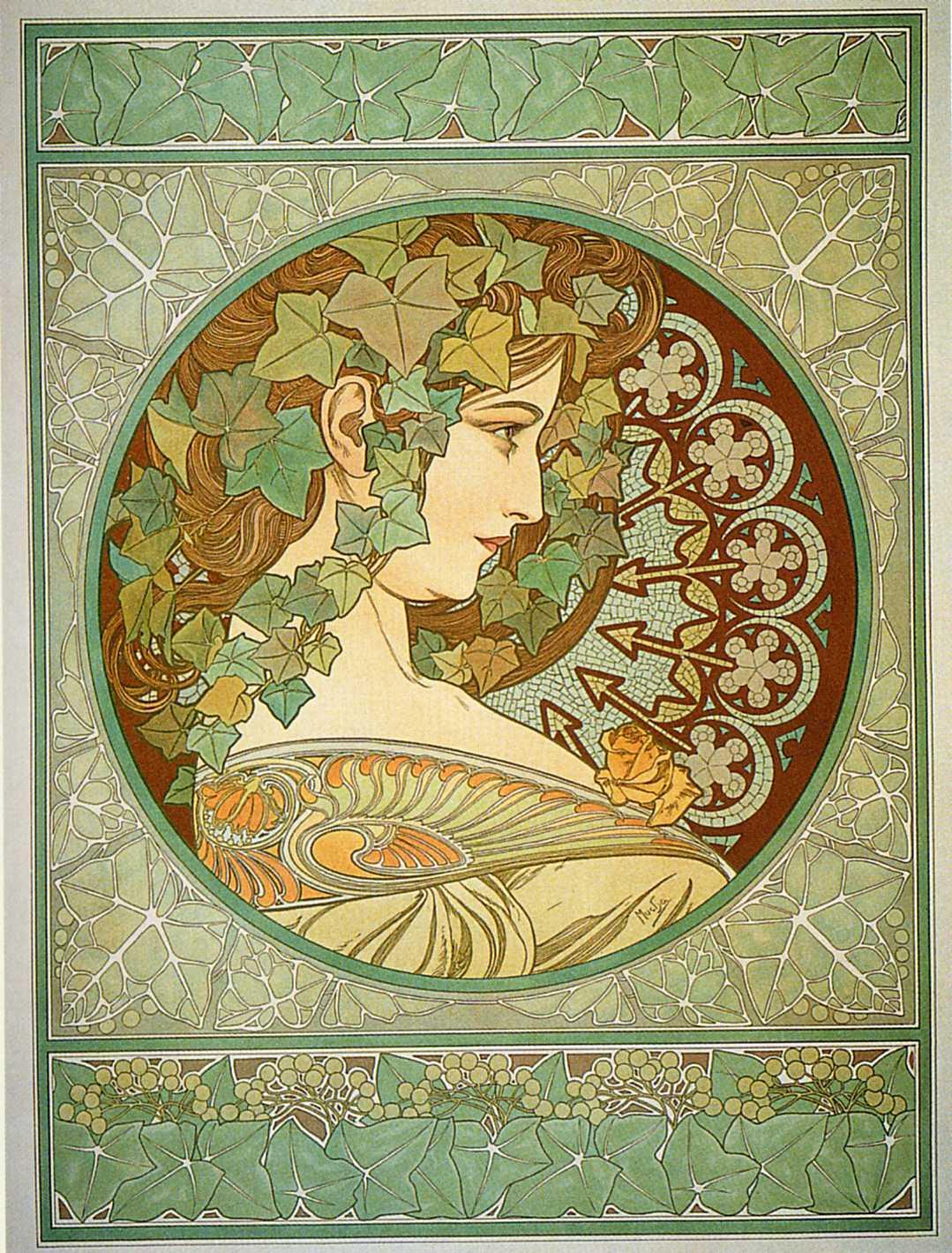 Растения-Плющ-1901
