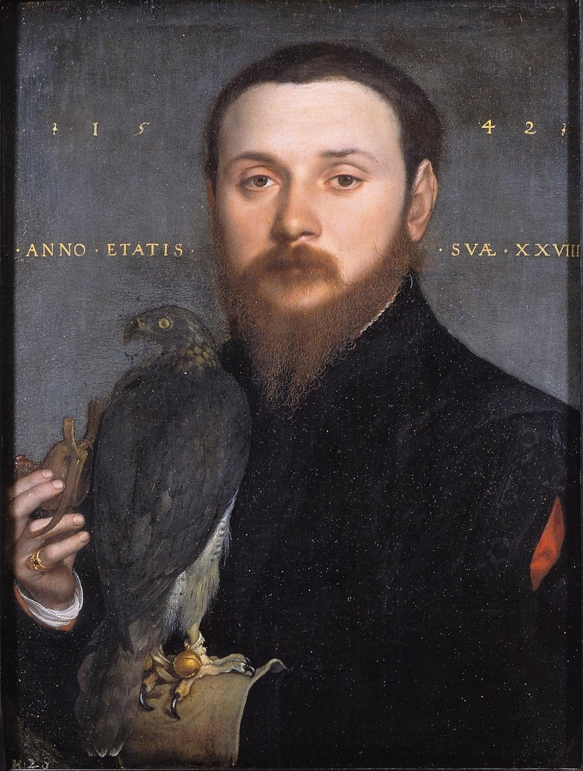 Portrait of a falconer. 1542