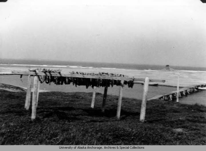 Fish_drying_and_the_bridge_across_the_river_to_the_sand_dunes.jpg