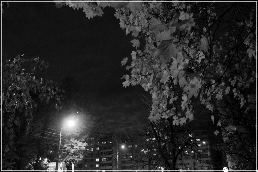полутон...ночь...