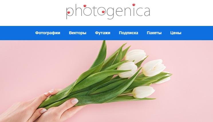 Цветы в фотобанке Фотодженика