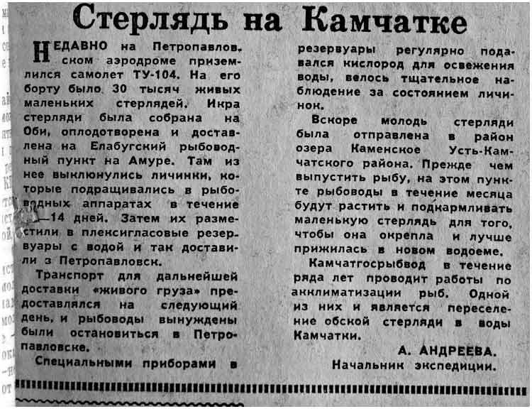 kp-1960-03