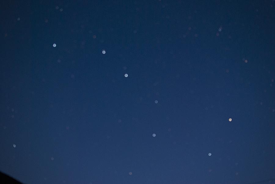 DSC_3867 Медведица.jpg