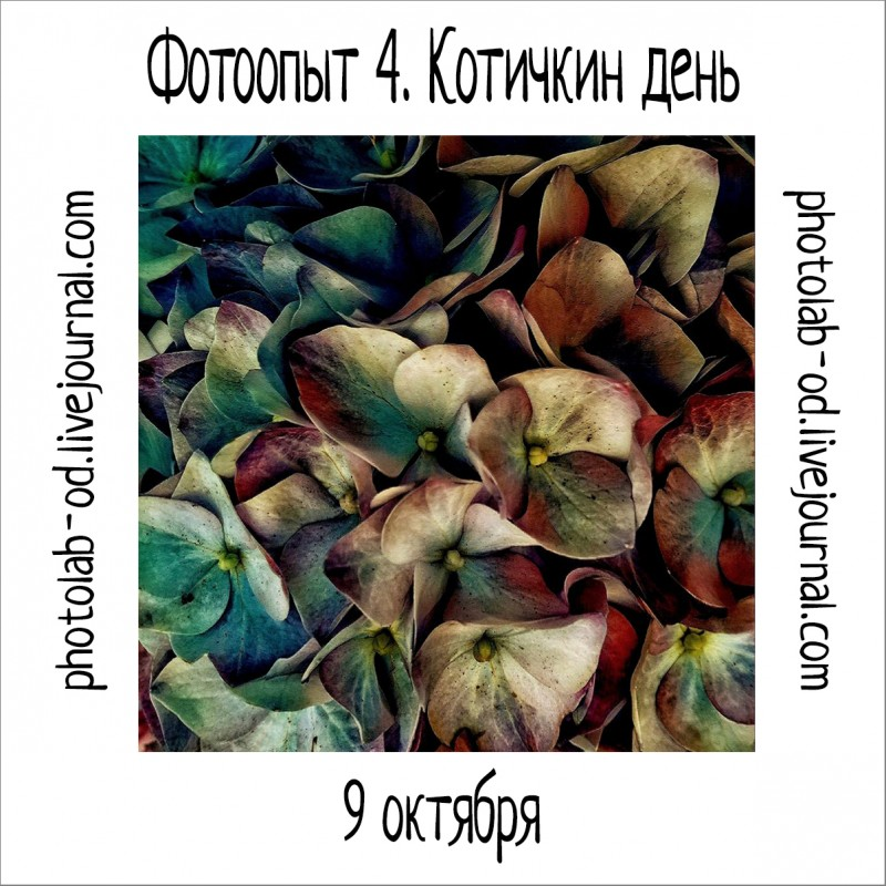 фотоопыт 4-2