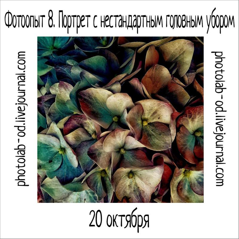 фотоопыт 8-1