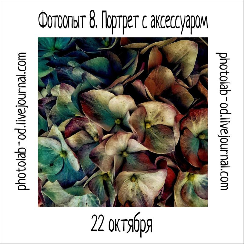 фотоопыт 8-3