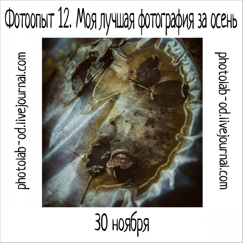 фотоопыт 12