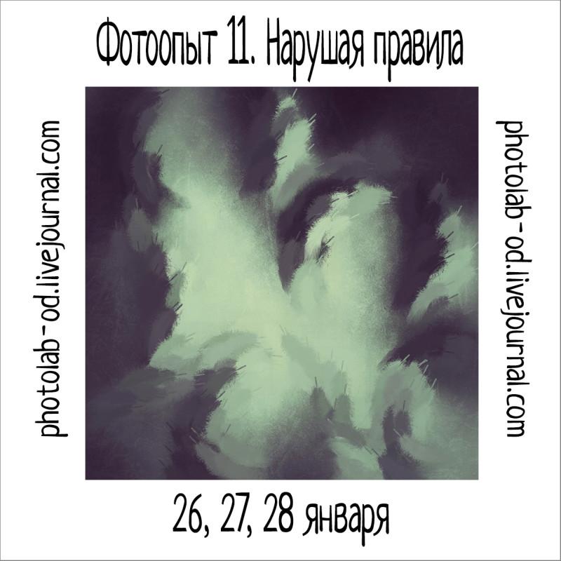 фотоопыт 11