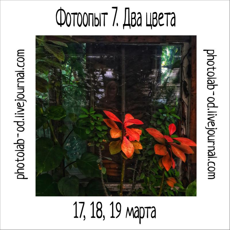 фотоопыт 7