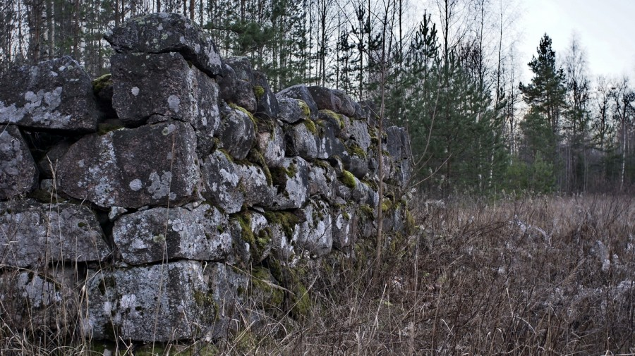 развалины финского поселка