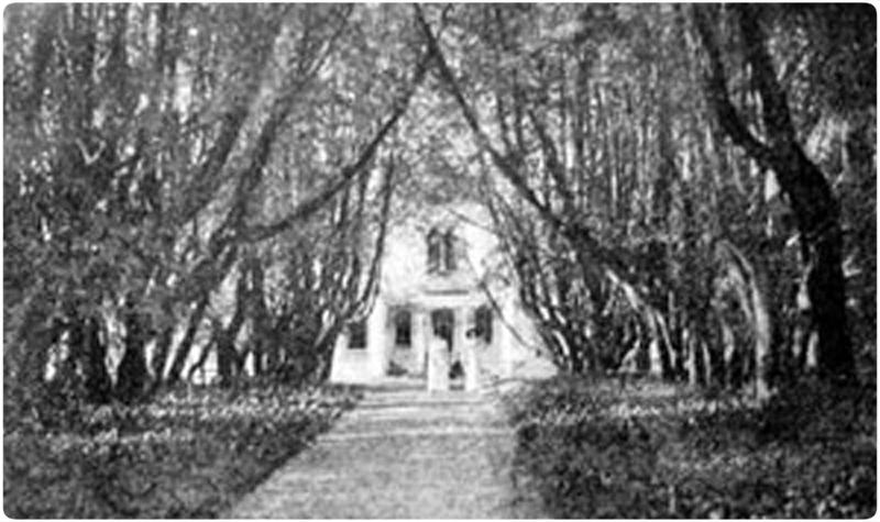 усадьба Алтуфьево юг