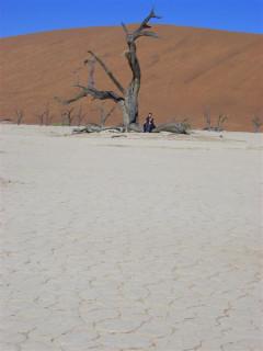 Crackajap taking a rest in Dead Vlei