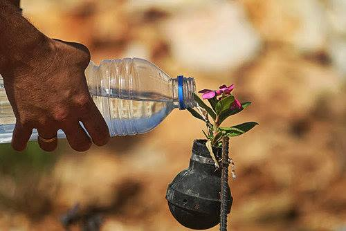 palestine bomb water