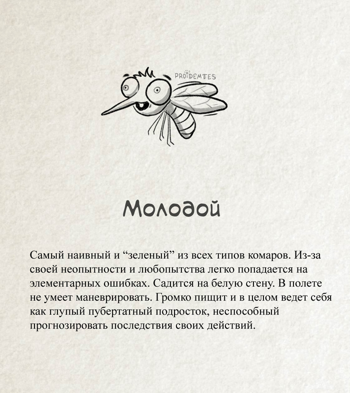 Комар - молодой