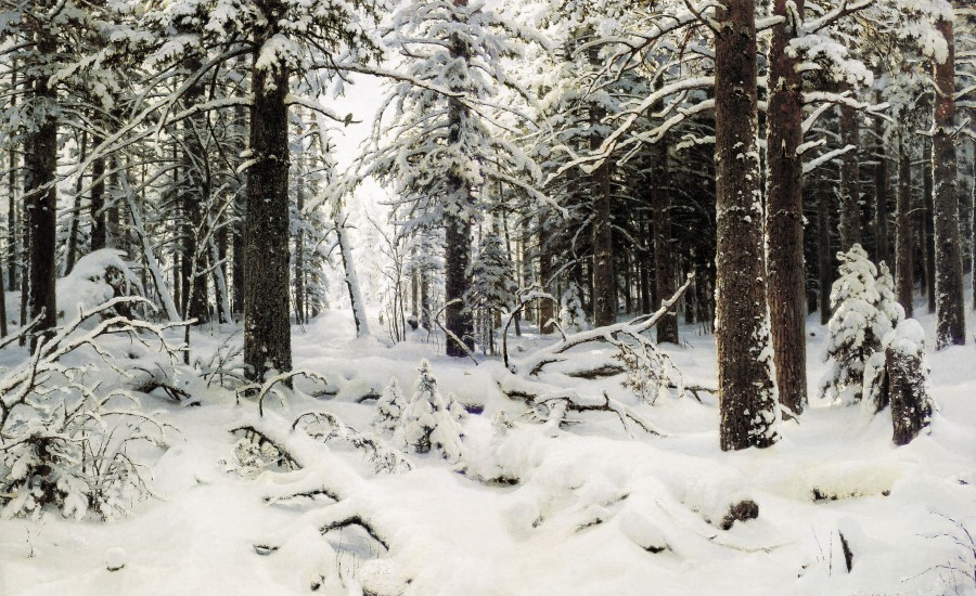 Шишкин Зима 1890