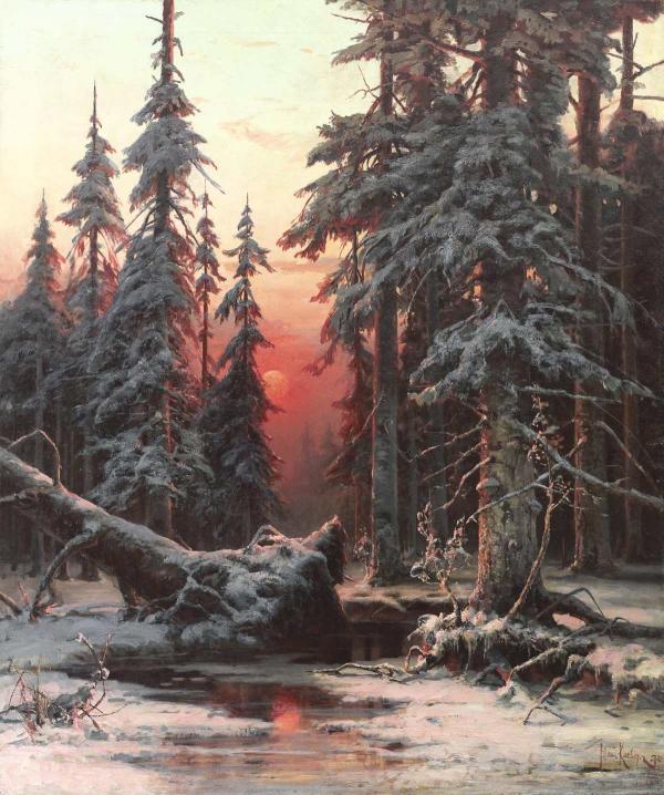 Клевер Зимний лес на закате